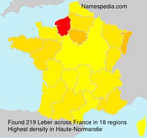 Surname Leber in France