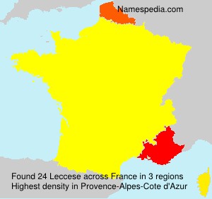 Surname Leccese in France