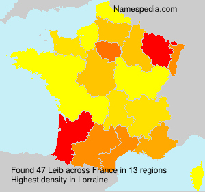 Surname Leib in France