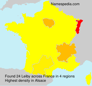 Surname Leiby in France
