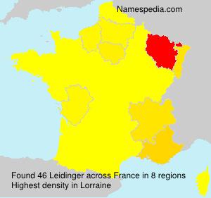 Surname Leidinger in France