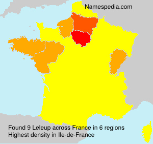 Surname Leleup in France