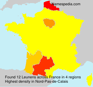 Surname Leunens in France