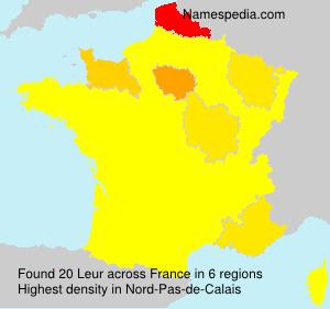 Surname Leur in France