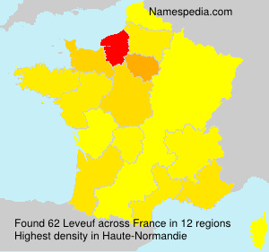 Surname Leveuf in France