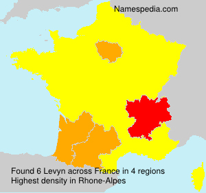 Surname Levyn in France