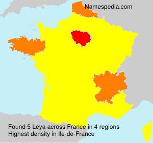 Surname Leya in France