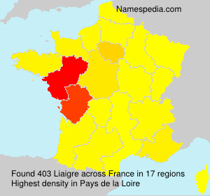 Surname Liaigre in France