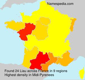 Surname Liau in France