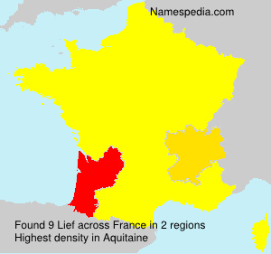 Surname Lief in France