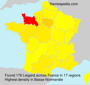 Surname Liegard in France