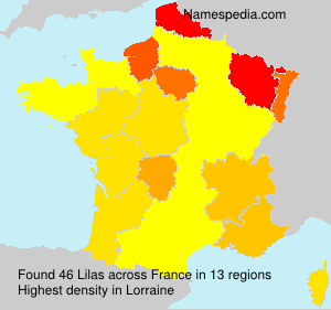 Surname Lilas in France