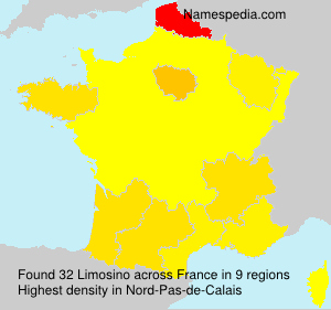 Surname Limosino in France