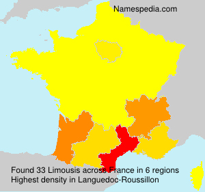 Surname Limousis in France