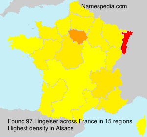 Surname Lingelser in France