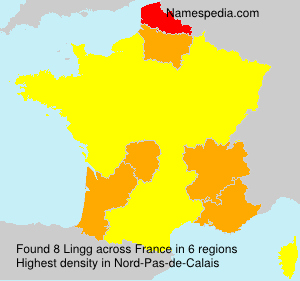 Surname Lingg in France