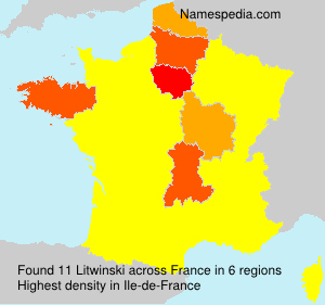 Surname Litwinski in France