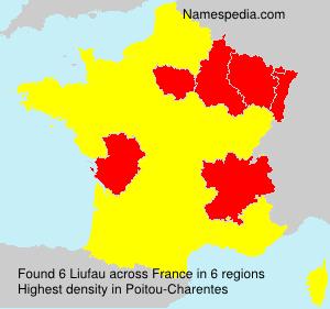 Surname Liufau in France