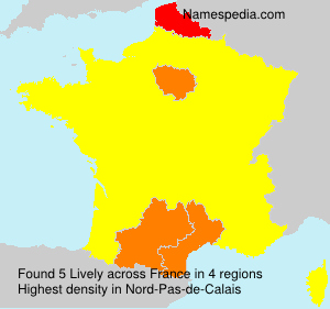 Surname Lively in France