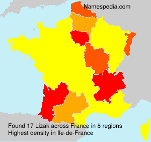 Familiennamen Lizak - France