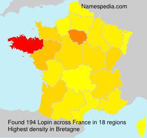 Surname Lopin in France