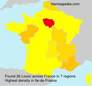 Surname Louizi in France