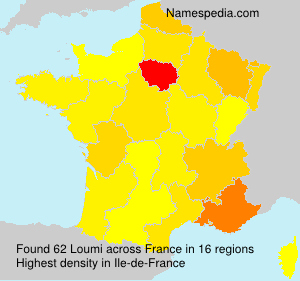 Surname Loumi in France