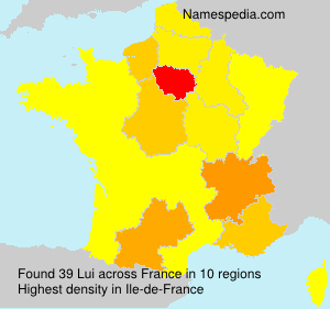 Surname Lui in France