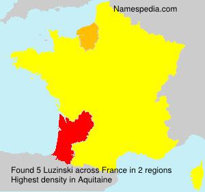 Surname Luzinski in France