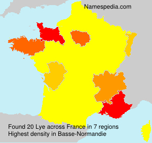 Surname Lye in France