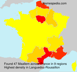 Surname Maallem in France