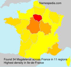 Surname Magdelenat in France