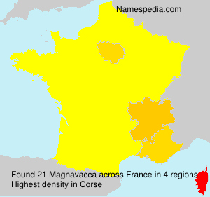 Surname Magnavacca in France