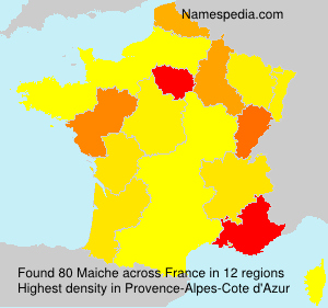 Surname Maiche in France