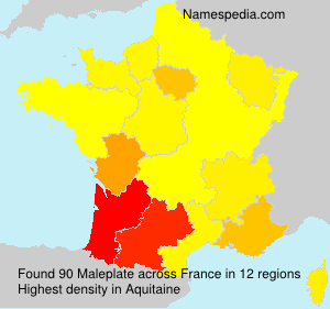 Surname Maleplate in France