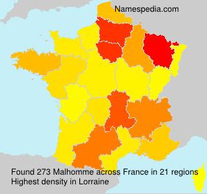 Familiennamen Malhomme - France