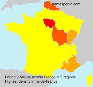 Familiennamen Maluta - France