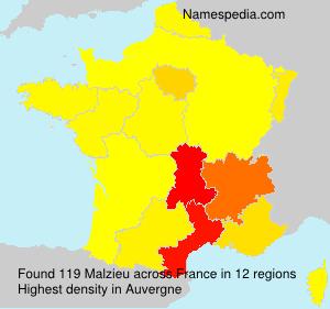 Familiennamen Malzieu - France