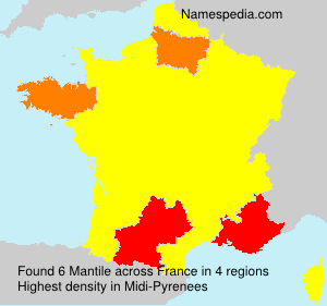 Surname Mantile in France