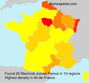 Surname Marcinek in France