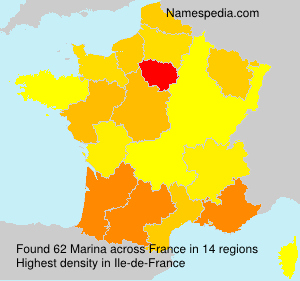 Surname Marina in France