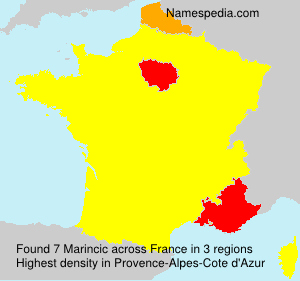 Surname Marincic in France