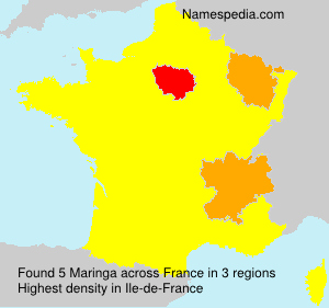 Surname Maringa in France