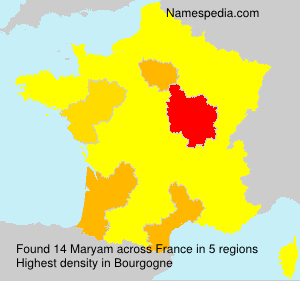 Surname Maryam in France