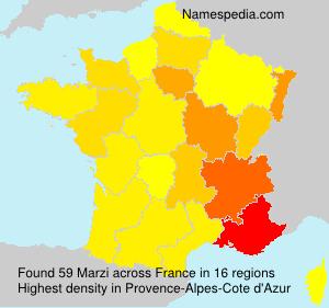 Surname Marzi in France