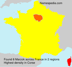 Surname Marzok in France