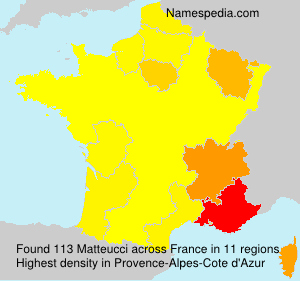 Surname Matteucci in France