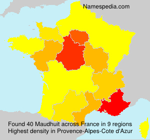 Surname Maudhuit in France