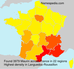 Surname Maurin in France