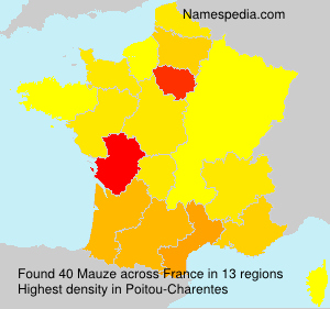 Surname Mauze in France